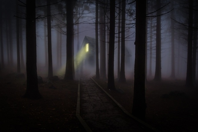 foggy-545838_1280 (1)